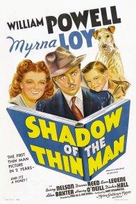 Affiche du film : L'ombre de l'introuvable