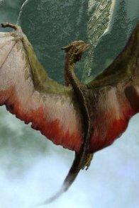 Affiche du film : Le dragon du lac de feu