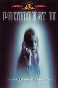 Affiche du film : Poltergeist III