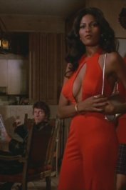 background picture for movie Foxy brown