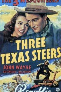 Affiche du film : Three texas steers