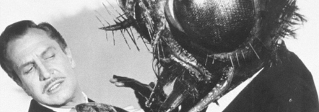 Photo du film : Return of the fly