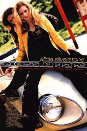 background picture for movie Excess baggage