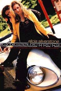 Affiche du film : Excess baggage