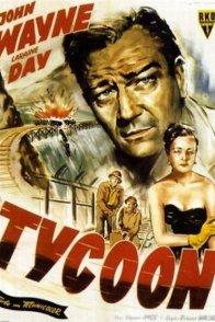 Affiche du film : Taikoun