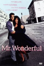 background picture for movie Mr wonderful