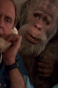 Affiche du film : Bigfoot et les henderson