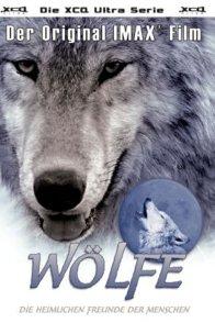 Affiche du film : Les loups