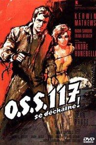 Affiche du film : OSS 117 se déchaîne