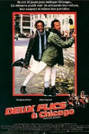 background picture for movie Deux flics a chicago