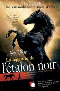 Affiche du film : La légende de l'étalon noir