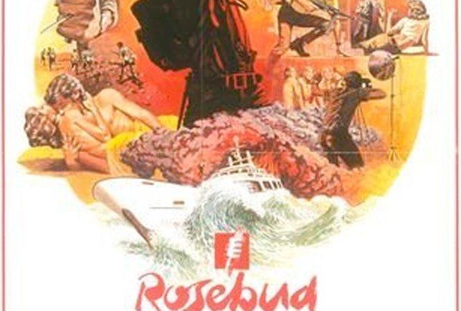 Photo du film : Rosebud