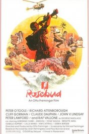 background picture for movie Rosebud
