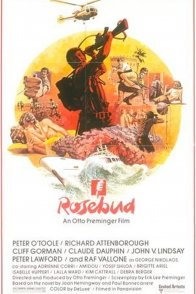 Affiche du film : Rosebud