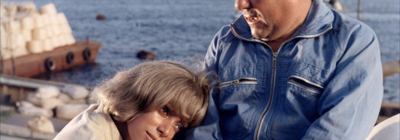 Photo du film : La grande sauterelle