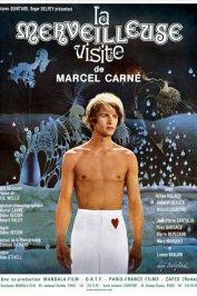 background picture for movie La merveilleuse visite