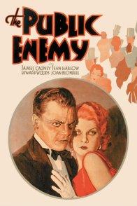 Affiche du film : L'ennemi public