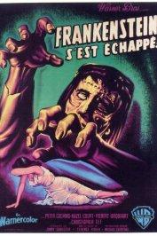 background picture for movie Frankenstein s'est echappe