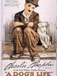 Photo dernier film Sydney Chaplin