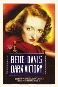 Affiche du film : Victoire sur la nuit