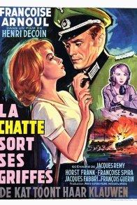 Affiche du film : La chatte sort ses griffes