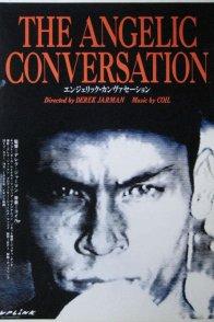 Affiche du film : The angelic conversation