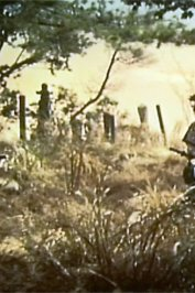 background picture for movie Musashi la voie de la lumiere