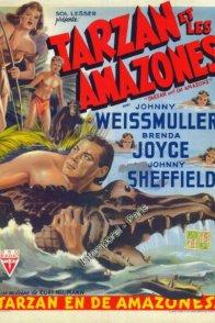Affiche du film : Tarzan et les amazones