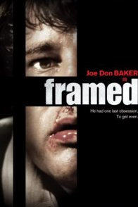 Affiche du film : La trahison