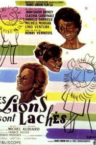 Affiche du film : Les lions sont lâchés