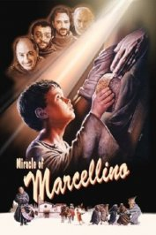 background picture for movie Marcellino