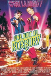 background picture for movie Une nuit au roxbury