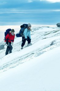 Affiche du film : The Mountain