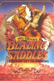 background picture for movie Le sherif est en prison
