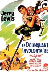 Affiche du film : Le Délinquant involontaire