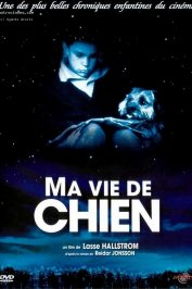 background picture for movie Ma vie de chien