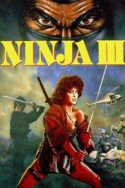 background picture for movie Ninja III
