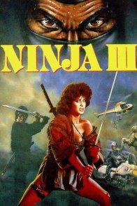 Affiche du film : Ninja III