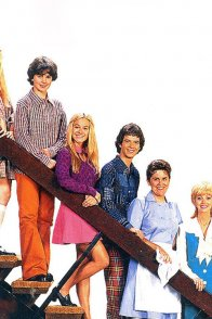 Affiche du film : The brady bunch movie