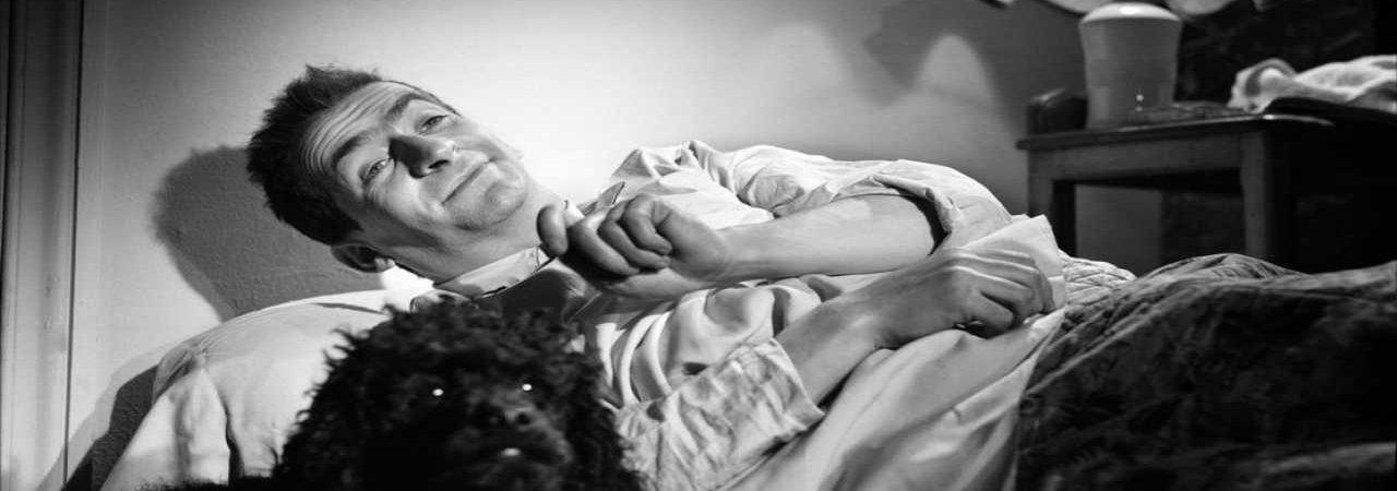 Photo du film : L'amour n'est pas un peche