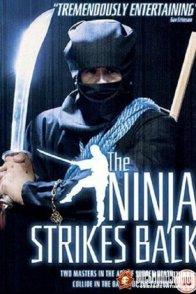 Affiche du film : Bruce contre attaque