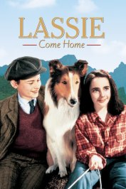 background picture for movie Fidele lassie