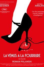 Affiche du film : La Venus à la fourrure