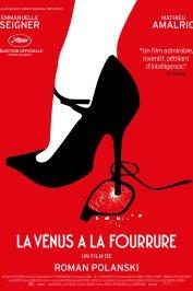 background picture for movie La Venus à la fourrure