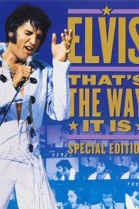 Affiche du film : That's the way it is