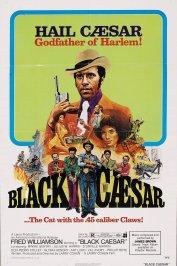 background picture for movie Le Parrain de Harlem