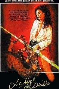 Affiche du film : Plaisirs pervers