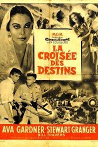 Affiche du film : Destins