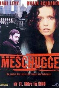 Affiche du film : Meschugge