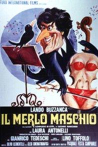Affiche du film : Ma femme est un violon